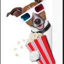 image of dog with popcorn promoting movie night on October 16th